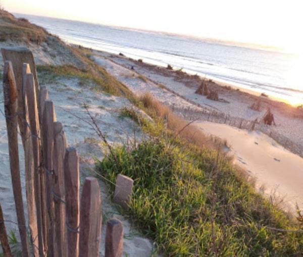 Pose de ganivelles - 1er Projet C Ma Terre en faveur de la biodiversité sur la plage du Petit Nice